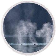 Synchronized Swimming Humpback Whales Alaska Round Beach Towel