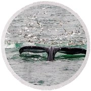 Tail Of A Whale Round Beach Towel