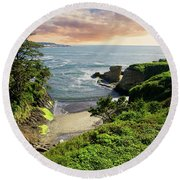 Tall Conifer Above Protected Small Cov Round Beach Towel