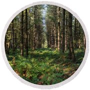 Tall Trees In Sherwood Forest Round Beach Towel