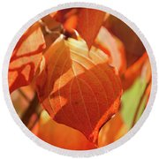 That Autumn Light Round Beach Towel