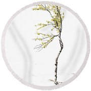 The Birch Tree Round Beach Towel