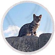 The Cat Round Beach Towel