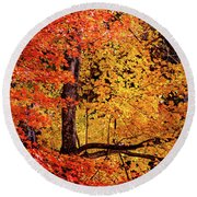 The Colors Of Fall Round Beach Towel