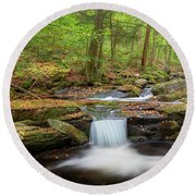 Round Beach Towel featuring the photograph The Ethereal Forest 2 by Bill Wakeley