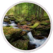 Round Beach Towel featuring the photograph The Ethereal Forest by Bill Wakeley