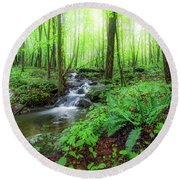 Round Beach Towel featuring the photograph The Green Forest by Bill Wakeley