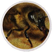 The Killer Bee Round Beach Towel