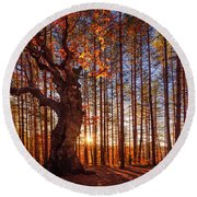 The King Of The Trees Round Beach Towel