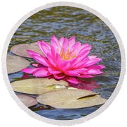 The Lady Is Pink 03 Round Beach Towel