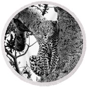 Round Beach Towel featuring the photograph The Leopard Sits In Wait In Black And White by Kay Brewer