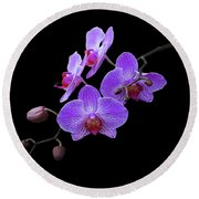 The Orchids Round Beach Towel