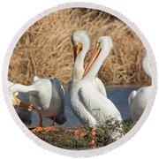 The Pelican Gang Round Beach Towel
