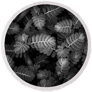 The Plant Patterns Round Beach Towel