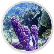 The Purple Sponge Round Beach Towel