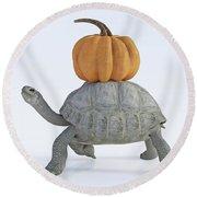 The Tortoise And The Pumpkin Round Beach Towel
