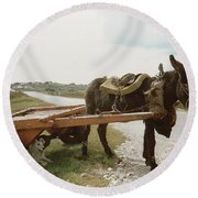 Round Beach Towel featuring the painting The Turf Donkey by Val Byrne