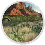 Round Beach Towel featuring the photograph The Watchman by Adam Romanowicz