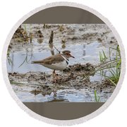 Three-banded Plover Round Beach Towel