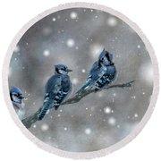 Three Blue Jays In The Snow Round Beach Towel
