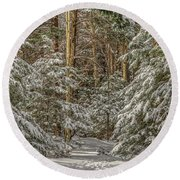 Round Beach Towel featuring the photograph Thru The Forest by Rod Best