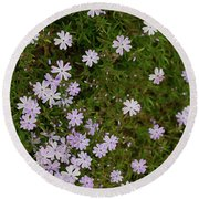 Tiny Phlox Round Beach Towel