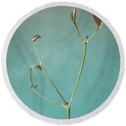 Tiny Seed Pod Round Beach Towel