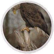 Tired Eagle Dad  Round Beach Towel