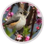 Titmouse And Peach Blossoms Round Beach Towel
