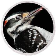 Tongue Of Woodpecker Round Beach Towel