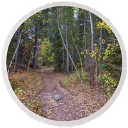 Round Beach Towel featuring the photograph Trailhead by James BO Insogna