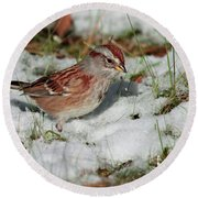 Tree Sparrow In Snow Round Beach Towel