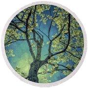 Tree Tops 0945 Round Beach Towel