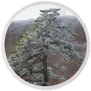 Tree With Hoarfrost Round Beach Towel