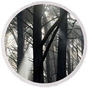 Trees And Fog Round Beach Towel