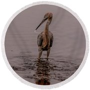 Tri Colored Heron Round Beach Towel