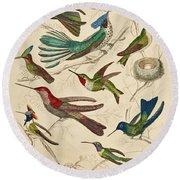 Trochilus - Hummingbirds Round Beach Towel