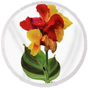Tropical Bouquet-flower Two Round Beach Towel