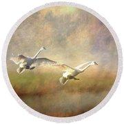 Trumpeter Swan Landing - Painterly Round Beach Towel