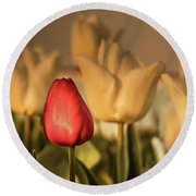 Round Beach Towel featuring the photograph Tulip Field by Anjo ten Kate