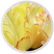 Tulipa Caribbean Parrot Petals Abstract Round Beach Towel