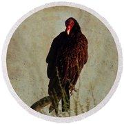 Turkey Vulture Vintage Round Beach Towel