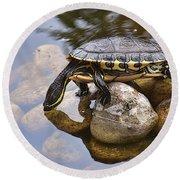 Turtle Drinking Water Round Beach Towel