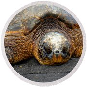 Turtle Rest Stop Round Beach Towel