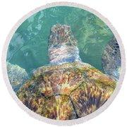Turtle Texture Round Beach Towel