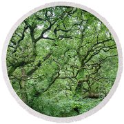 Round Beach Towel featuring the photograph Twisted Forest Full Color by Nathan Bush