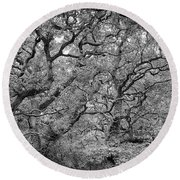 Twisted Forest Round Beach Towel