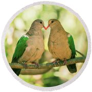 Two Colourful Doves Resting Outside On A Branch. Round Beach Towel