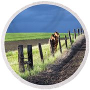 Two Horses In The Palouse Round Beach Towel