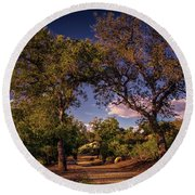 Two Old Oak Trees At Sunset Round Beach Towel
